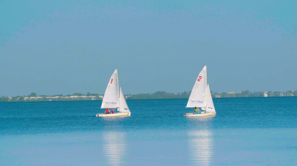 Views of Sarasota Bay and the New College of Florida sailing team from the college campus.
