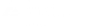 Junior Achievement Tampa Bay Logo
